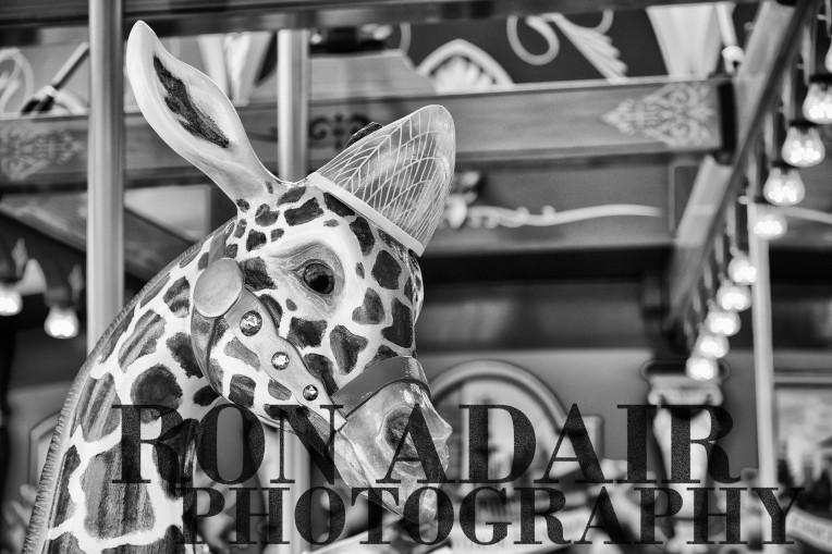 Skyscraper Giraffe at Carol Ann's Carousel